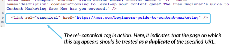 Example of a canonical tag provided by MOZ.